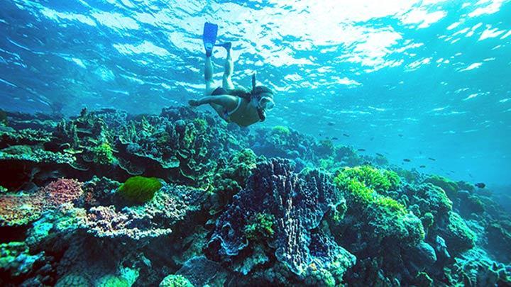 snorkeling in Maldives
